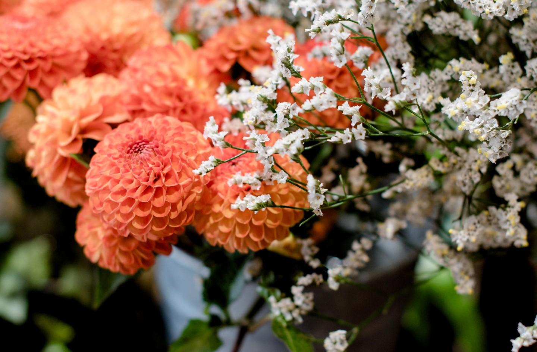 Branche et nature fleuriste à Nantes Chantenay Sainte Anne